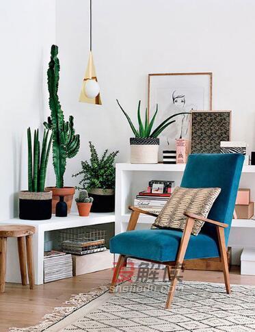 绿色植物装饰的室内设计02