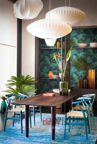 让绿色植物装扮充满生机勃勃的室内空间设计